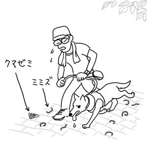 Sketch1565581894655