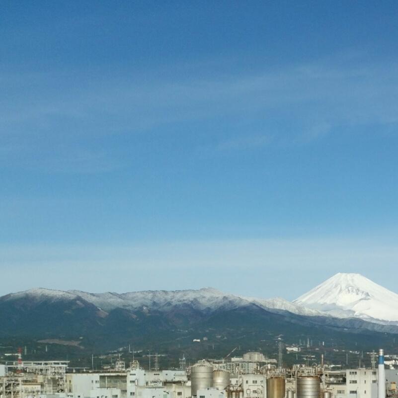 富士山も愛鷹山も真っ白